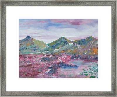 The Peat Bog Framed Print by Conor Murphy