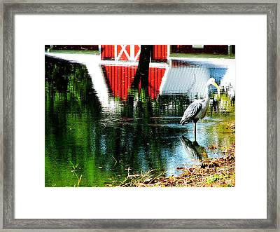 The Pelican Brief Stop Framed Print by Tina M Wenger