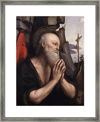 The Penitent St. Jerome Oil On Panel Framed Print by Giovanni Pedrini Giampietrino