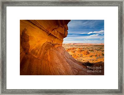 The Perch Framed Print by Inge Johnsson