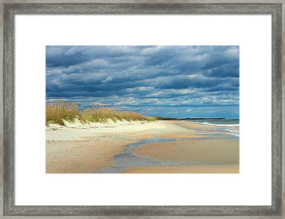 The Perfect Beach Shot Framed Print by Lisa Campbell