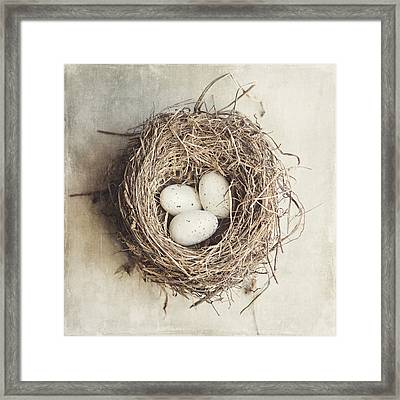 The Perfect Nest Framed Print by Lisa Russo