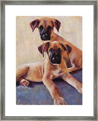 The Perfect Pair Framed Print by Billie Colson