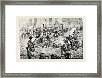 The Perfumery Manufacture At Grasse Sorting Roses France Framed Print by French School