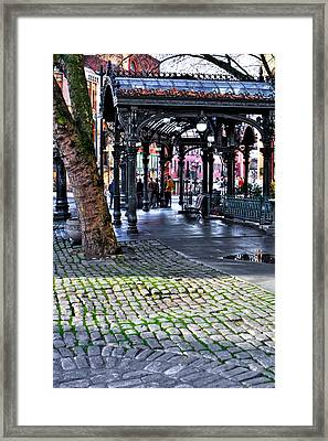 The Pergola - Pioneer Square - Seattle Washington Framed Print by David Patterson