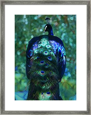 The Persian Bird Framed Print