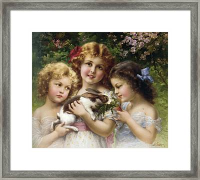 The Pet Rabbit Framed Print