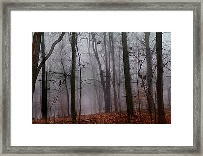 The Phantom Rises Framed Print by Betsy Knapp