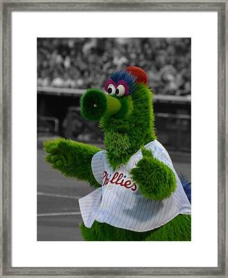 The Phillie Phanatic Framed Print by David Ziegler