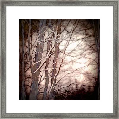 The Philosophy Of Snow Framed Print