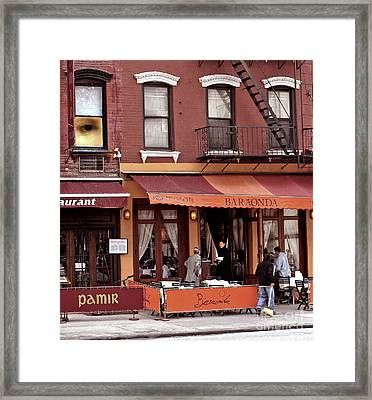 The Photographer's Eye Framed Print by Madeline Ellis