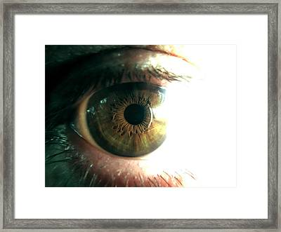The Physicists Eye Framed Print