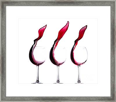 The Physics Of Wine Framed Print by Jordan Danko