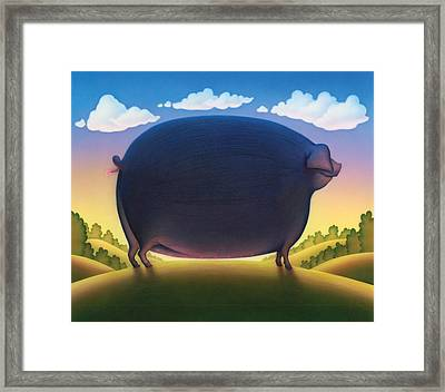 The Pig Framed Print by Andrew Farley
