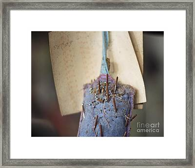 The Pincushion Framed Print by Jillian Audrey Photography
