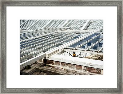 The Pineapple Pit Framed Print