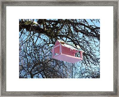 The Pink Bird Feeder Framed Print by Ausra Huntington nee Paulauskaite