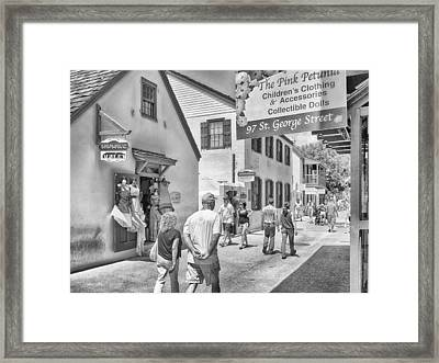 Framed Print featuring the photograph The Pink Petunia by Howard Salmon