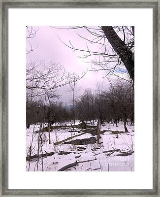 The Pink Winter Light On The Mountain Top Framed Print by Patricia Keller