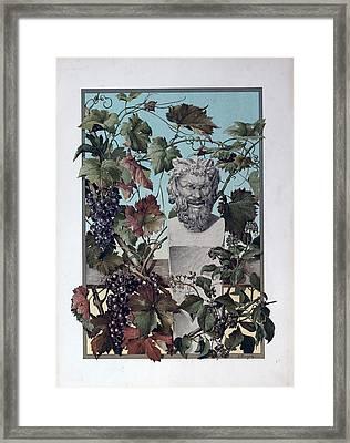 The Plant, Grapes, Bacchus, Wine, Mythology, Vine, Symbol Framed Print by English School