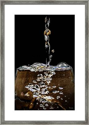 The Plunge Framed Print by PhotoWorks By Don Hoekwater