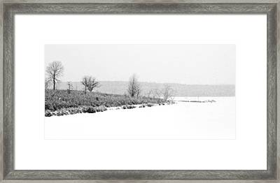 The Point In Winter Framed Print by Nikolyn McDonald