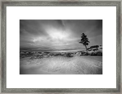 The Point Framed Print by Jakub Sisak