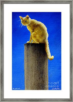 The Pole Cat... Framed Print by Will Bullas