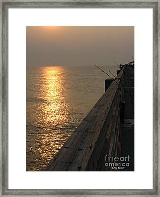 The Pole Framed Print