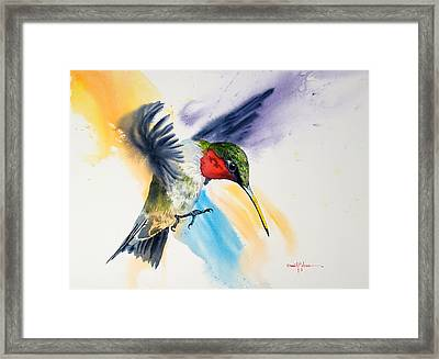 Da170 The Pollinator Daniel Adams Framed Print