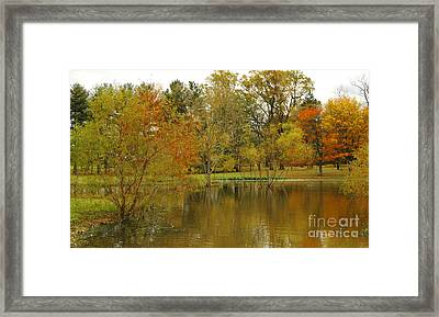 The Pond At Pidcock Creek Road Framed Print