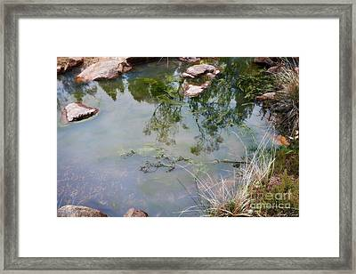 The Pond At The Top Of The Falls Framed Print by Linda Lees