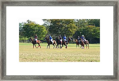 The Ponies Playing Framed Print by Karen Silvestri