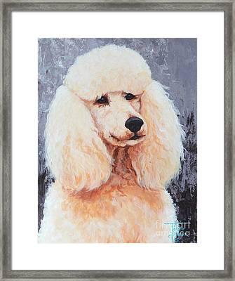 Attentive Poodle Framed Print
