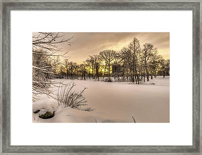 The Pool Frozen Over At Sunrise Framed Print by F. M. Kearney