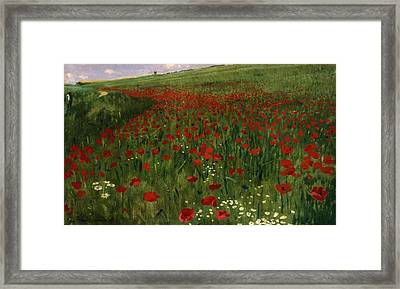The Poppy Field Framed Print by Pal Szinyei Merse