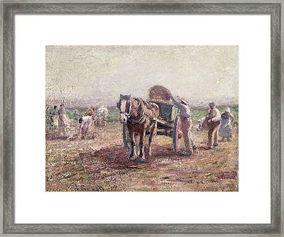 The Potato Pickers Framed Print by Harry Fidler