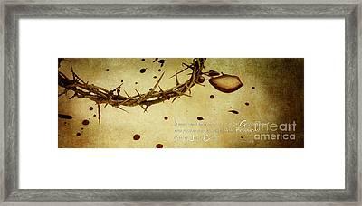 The Precious Blood Framed Print by Stephanie Frey