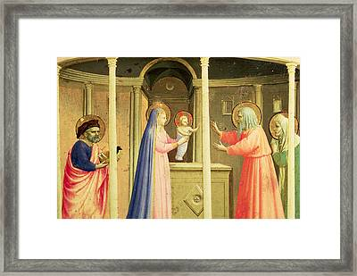 The Presentation In The Temple Framed Print by Fra Angelico