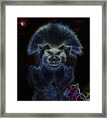 The Primordial Past Framed Print by David Lee Thompson