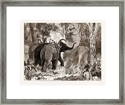 The Prince Of Wales Hunting In The Terai Framed Print