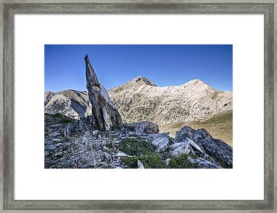 The Profit From Musgia Framed Print by Peter Eastland