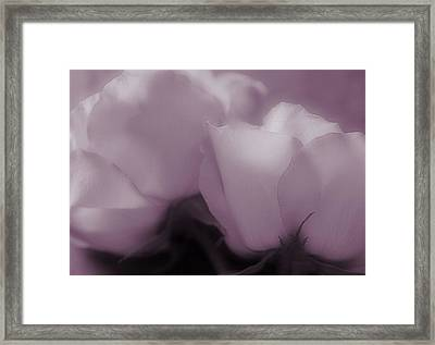 The Promise Of Love Framed Print
