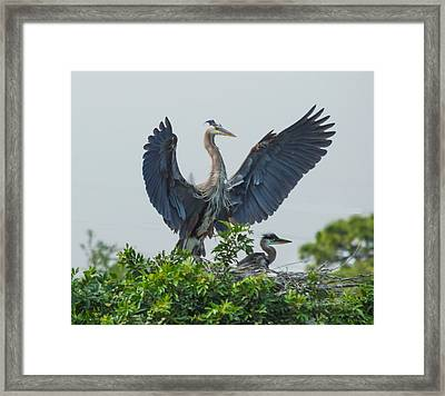 The Protector Framed Print