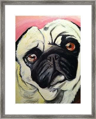 The Pug Framed Print by Melissa Bollen