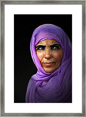 The Purple Sari Framed Print by Diana Angstadt