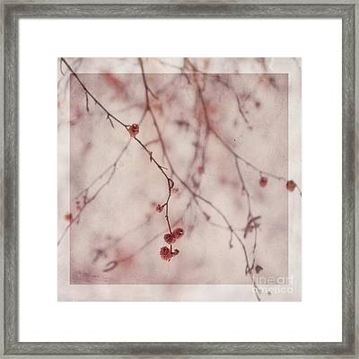 The Purr Of Autumn Framed Print