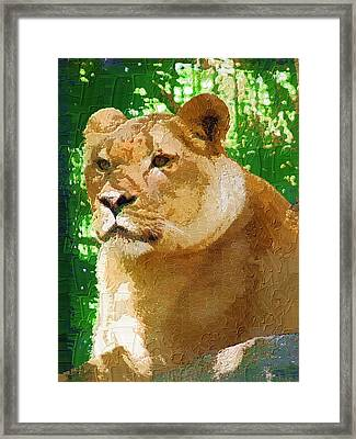 Framed Print featuring the photograph The Queen by Diane Miller