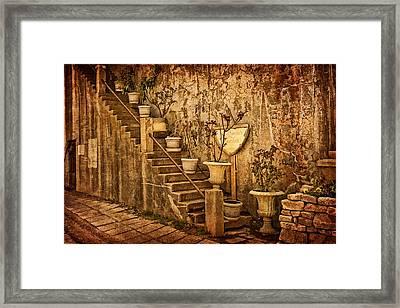 The Queen's Garden Framed Print by Priscilla Burgers
