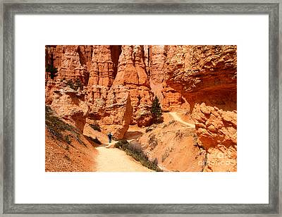 The Queens Garden Trail Bryce Canyon Framed Print by Butch Lombardi